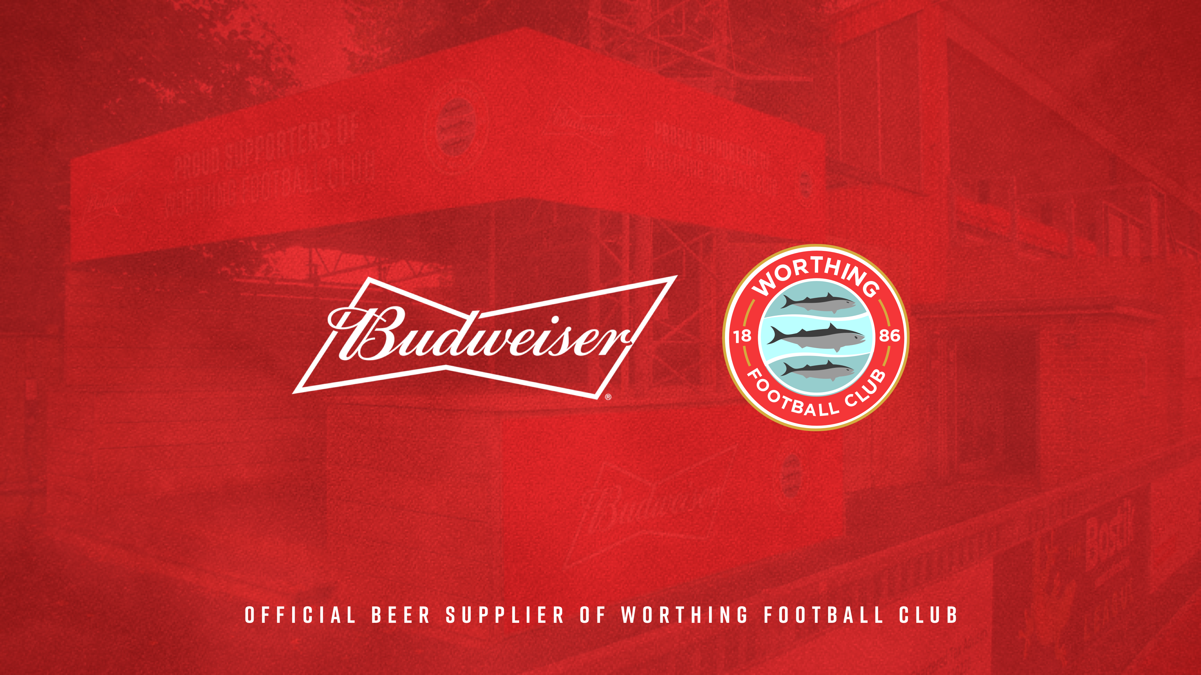 Worthing Football Club Announces Budweiser as Official Beer Supplier